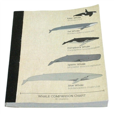JOURNAL - RECLAIMED PAPER WHALE - Portico Indoor & Outdoor Living Inc.
