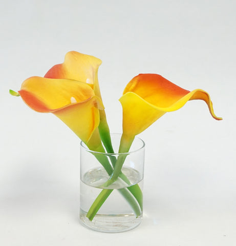 CALLA - FLAME - Portico Indoor & Outdoor Living Inc.