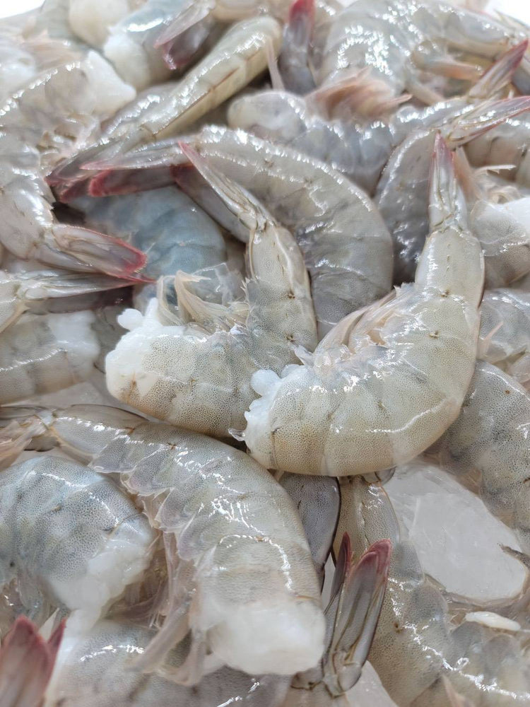 Load image into Gallery viewer, Fresh Harvested Jumbo Sun Shrimp Tails