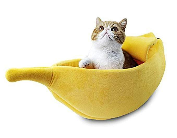 KittyPeel - Pet Banana Hideaway