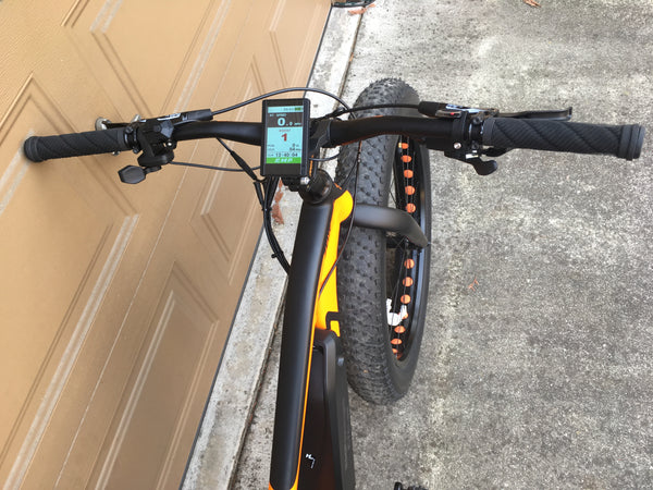 Reid Zeus Fat Bike 120mm BBSHD DPC-14 display EMPowered Cycles