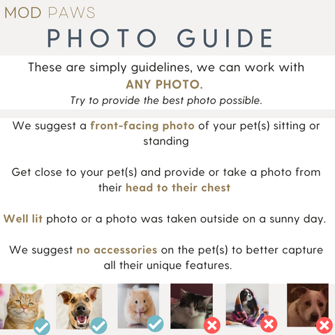 Mod Paws Photo Guide