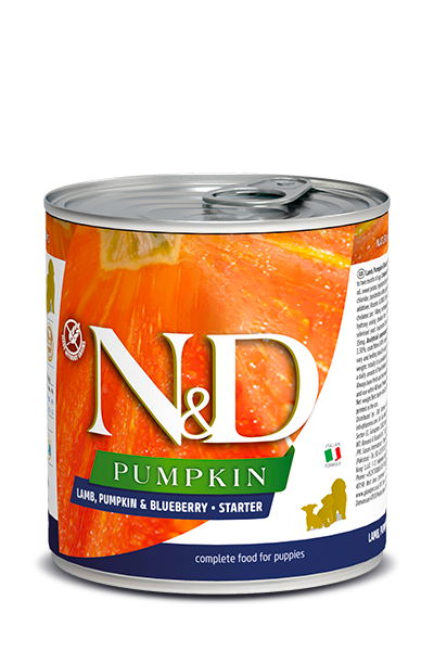 N&D DOG LAMB & PUMPKIN & BLUEBERRY STARTER 285GRX12
