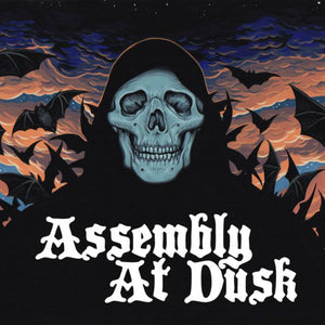 ASSEMBLY AT DUSK - Assembly At Dusk LP