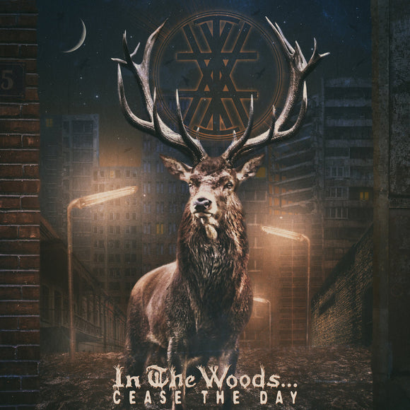 IN THE WOODS... - Cease The Day CD