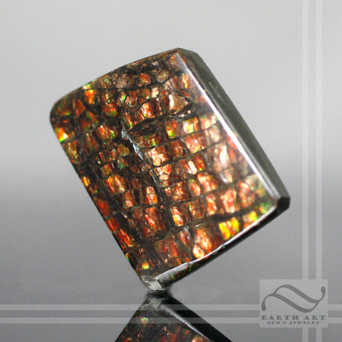 Bright Ammolite - 32 carats - Loose gemstone - Dragonscale