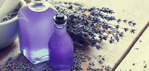 What are the Benefits of Lavender oil? hd images lavender, laval
