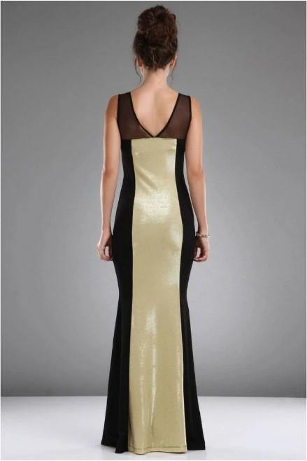 Vavin Golden Dress - Black and Gold - Colorful Wings