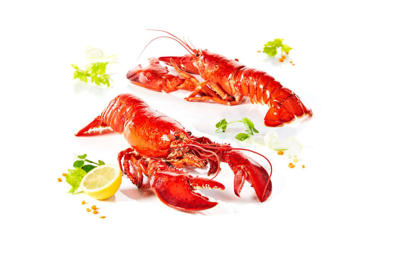 Lobster Whole Cooked 450G FROZEN