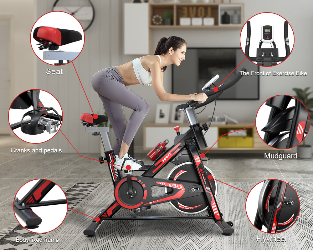 Structure of The Exercise Bike