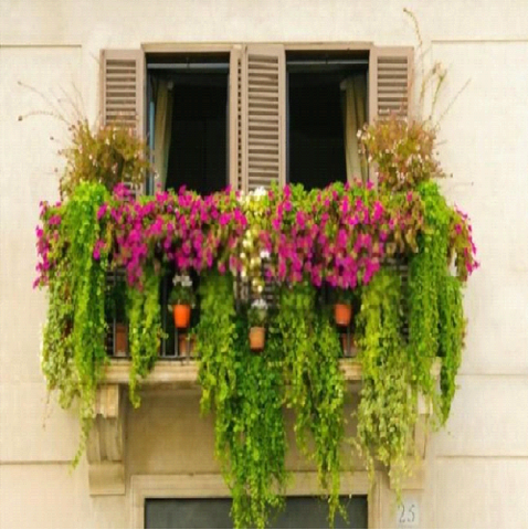 Have a Small Balcony? We've Got You Covered