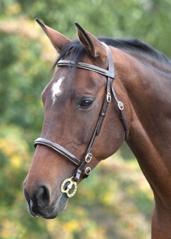 Blenheim Fancy Stitched In Hand Bridle