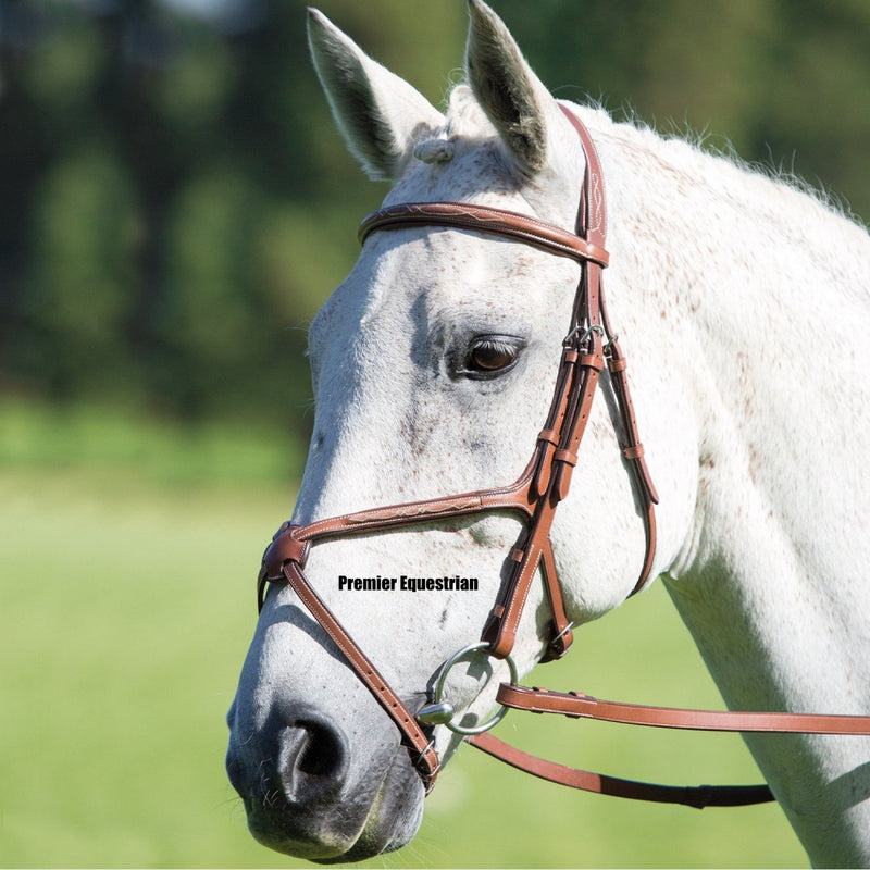 Shires Avignon Mexican Bridle