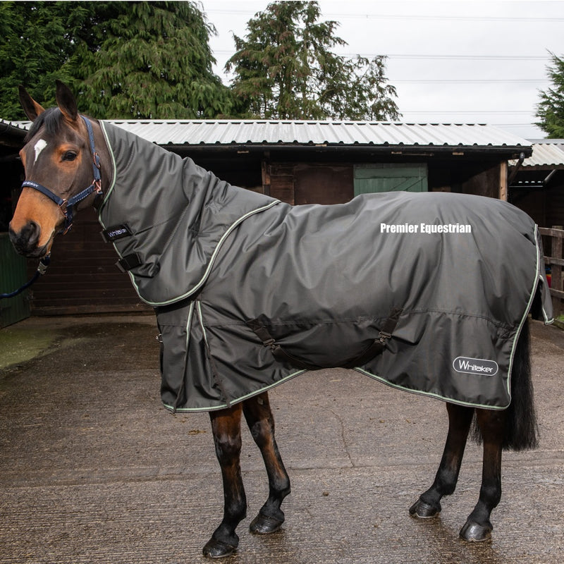 Whitaker Turnout Rug Detach-A-Neck Wardle 250g