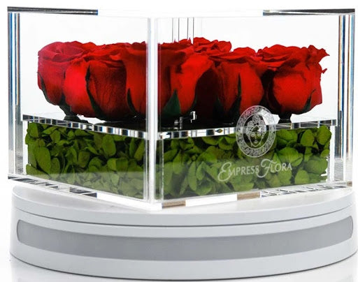 nine pieces of preserved red roses encased in a empress flora glass containe