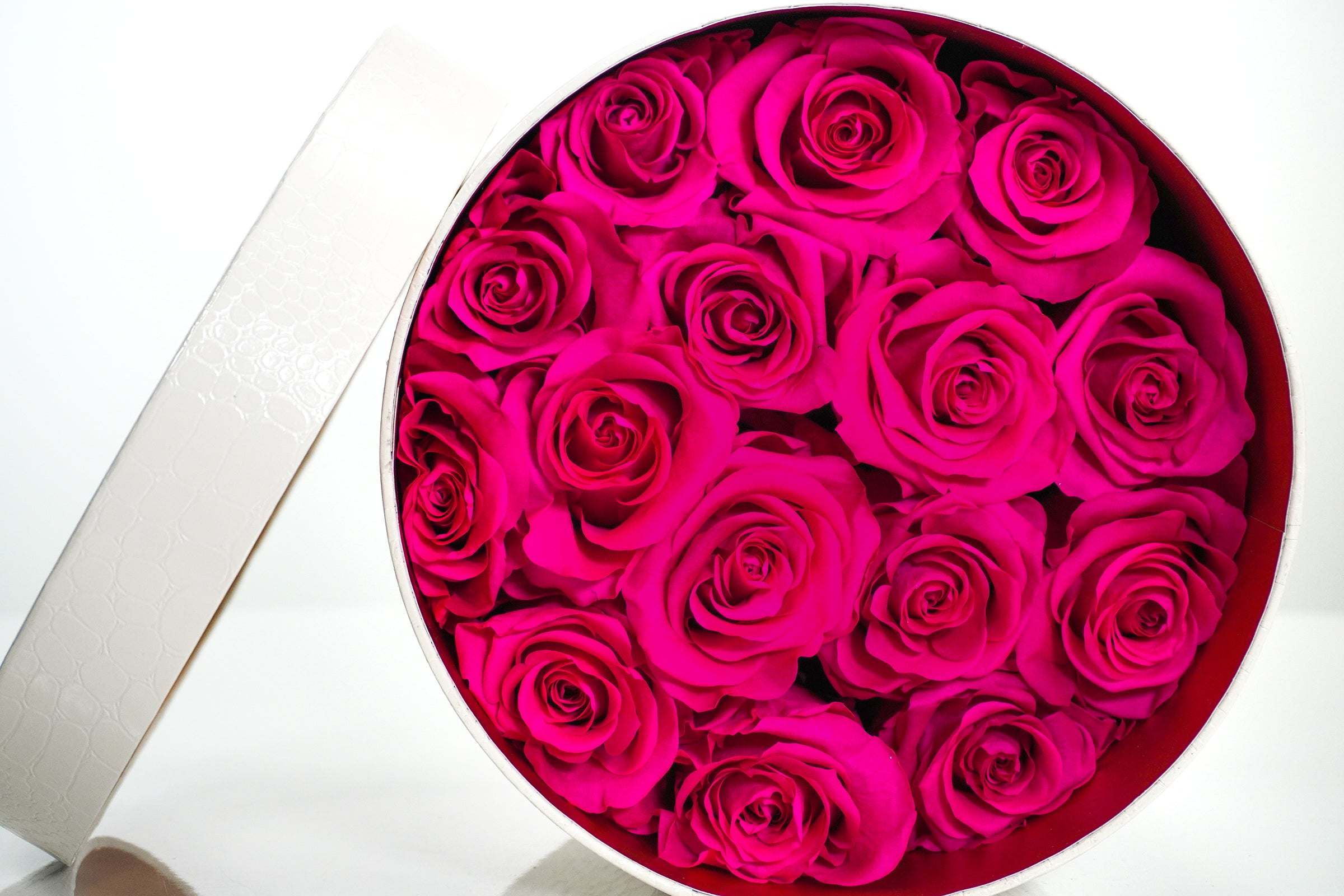 Classic White Round - Hot Pink Rose Top View with Lid