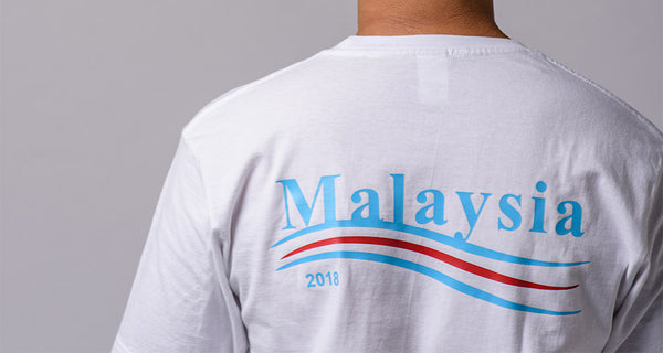 Why You Should Be Voting In The Upcoming GE14