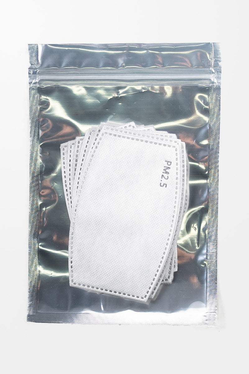 PM2.5 Mask Filters (Pack of 10)