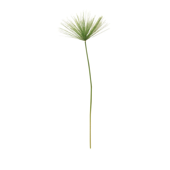 Stem 73cm - Umbrella Grass/Green