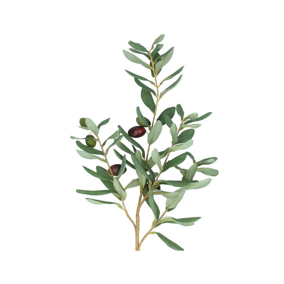 Spray 80cm - Olive Branch