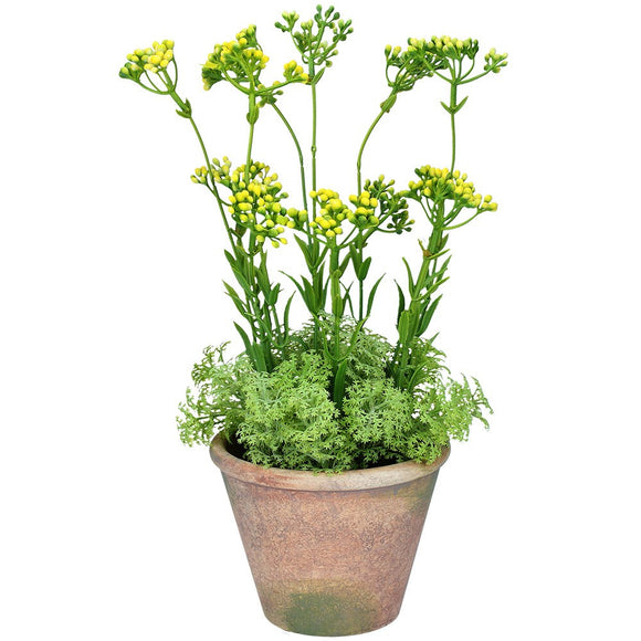 Faux Pot Plant 35cm - Yellow Wax Flower w Moss