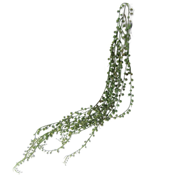 Trailing Pick 80cm - String of Pearls