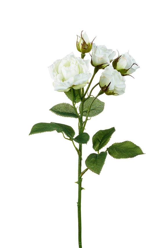 ROSE SPRAY X4 FLOWERS X1 BUD Height 47cm WHITE