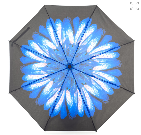 Everyday Reverse Folding Umbrella Blue Daisy