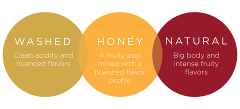 """A diagram with three circles that contain information, one says """"washed, clean acidity and nuanced flavors"""" the second circle says """"honey, a fruity pop mixed with a nuanced flavor profile"""" and the third circle says """"natural, big body and intense fruity flavors"""""""