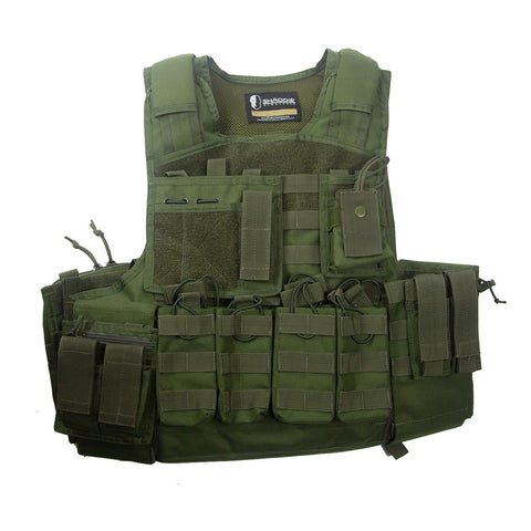 SHS - Assault Plate Carrier