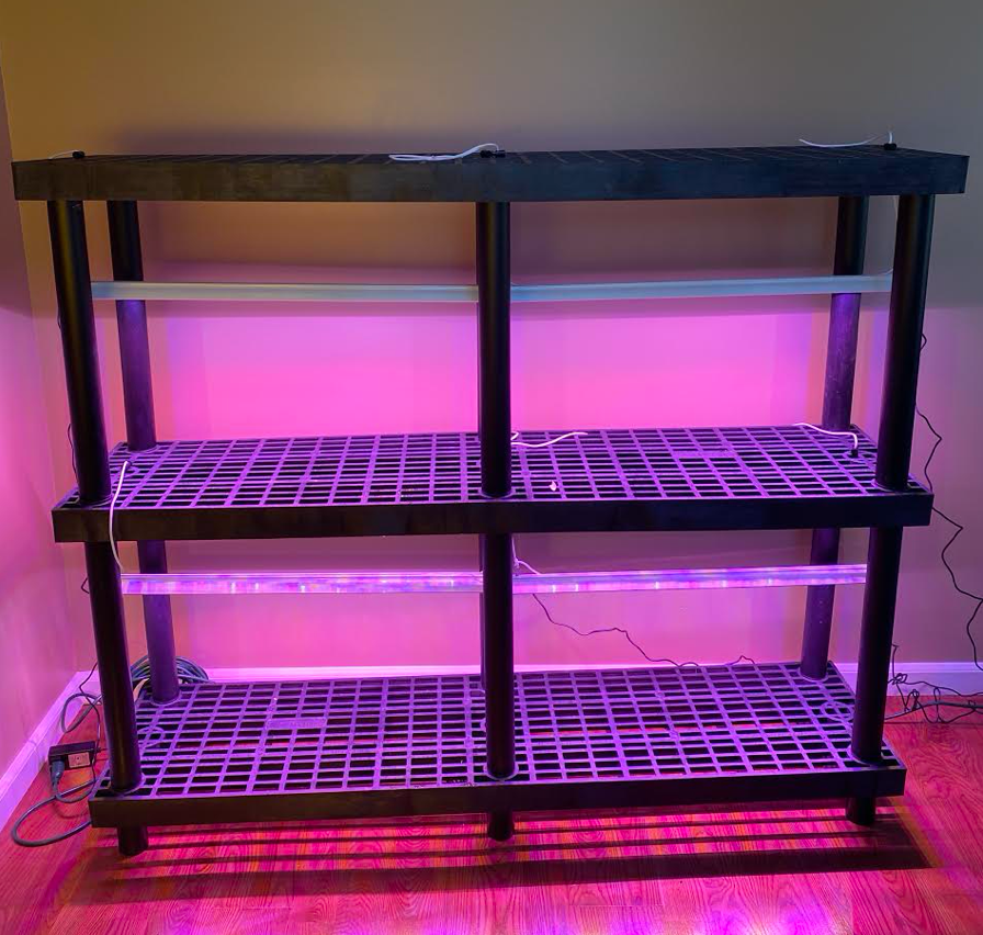 The Perfect Indoor Grow Racks