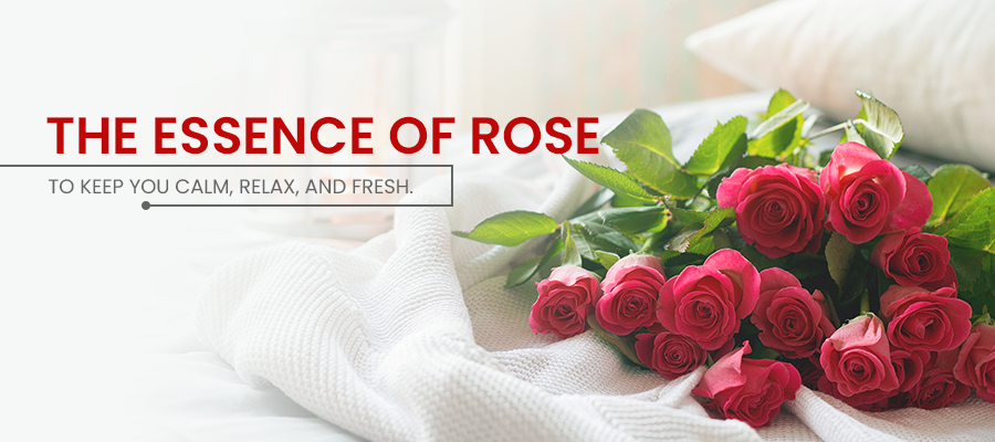 The Essence of Rose