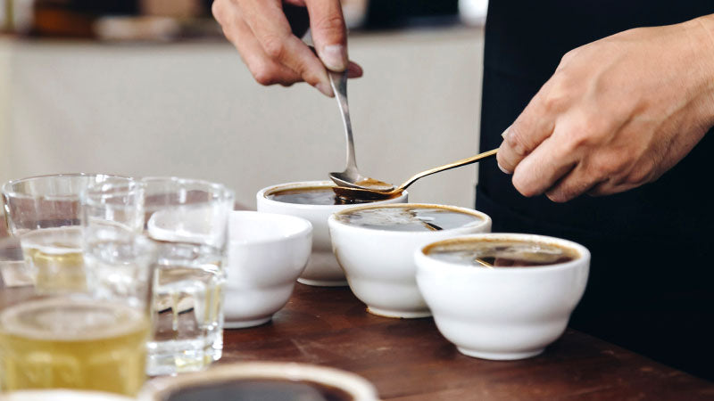 Artisan Coffee Co Ashley Palmer-Watts Journey the process cupping spoons slurping