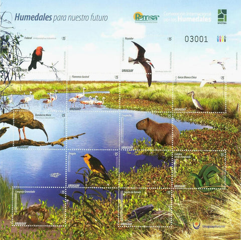Wetlands for our future|Humedales para Nuestro Futuro - 2015 -