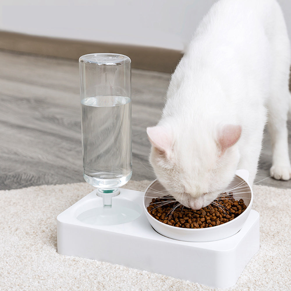 Pet Water & Food Set
