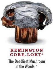 Remington Core-Lokt 303 British 180 Gr SP