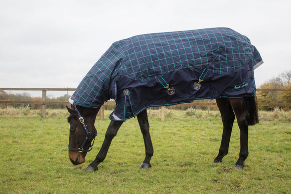 Mark Todd Heavyweight combo turnout rug 1200D