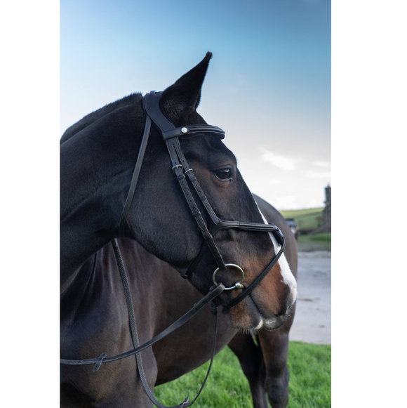 Ecorider Eventair anatomical grackle bridle