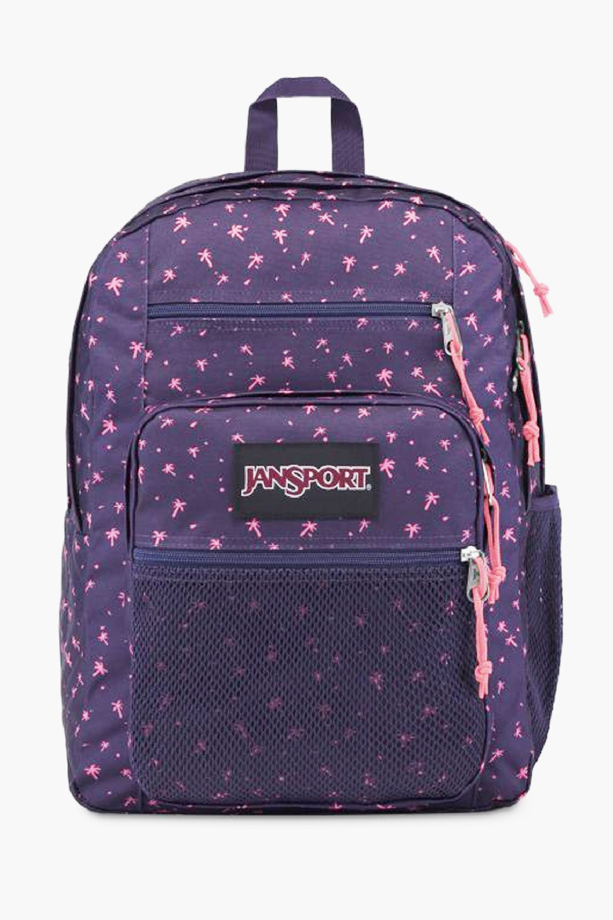 JanSport Big Campus Backpack - Palm Life