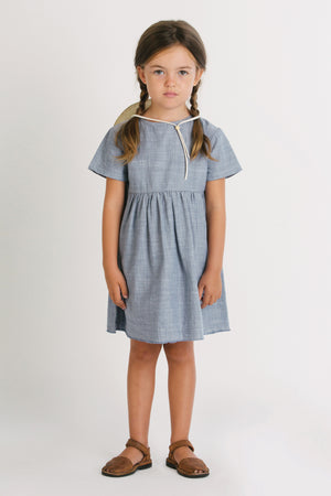 Go Gently Nation Chambray Prairie Dress