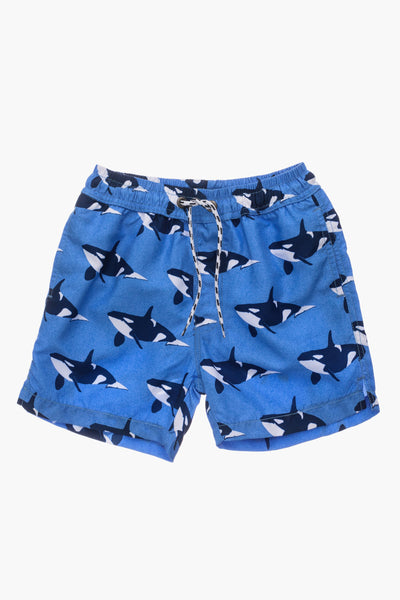 Snapper Rock Orca Ocean Volley Kids Board Short