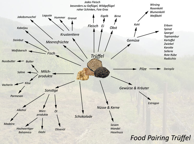 Recipe Tips Truffles - Food Pairing Truffles