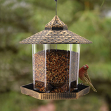 Twinkle Star Wild Bird Feeder Hanging Garden