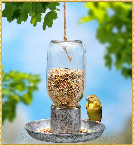 Hanging Glass Mason Jar Wild Bird Feeder Seed Food Decorative