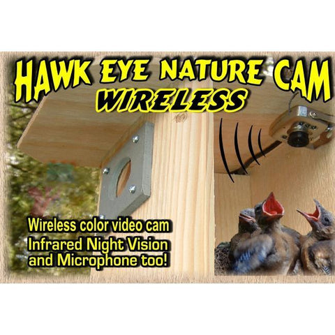 Birdhouse Spy Cam Hawk-Eye Wireless Spy Camera