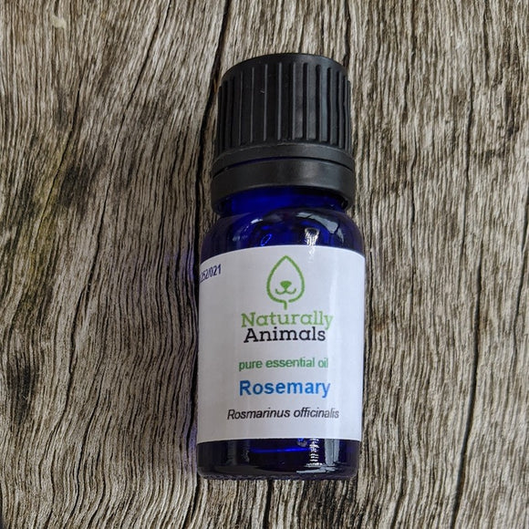 Rosemary Essential Oil 10ml