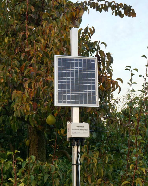 Frost detection device in fruit orchard