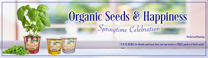 Organic Seeds & Happiness Springtime Celebration!