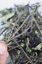 Load image into Gallery viewer, Dried Blue Vervain for sale