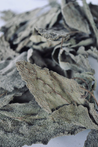 Dried Clary Sage for sale